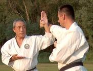 Magyarországi Wado-ryu Karate Szövetség