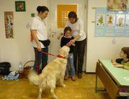 Közelebb az Állatokhoz Közhasznú Alapítvány