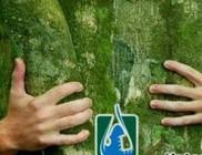 Csermely Környezetvédelmi Egyesület